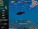 3D Balık Avı 2