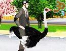 3D Deve Kuşu Gezintisi