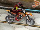 3D Hünerli Motorcu