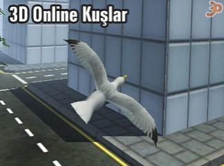 3D Online Kuşlar