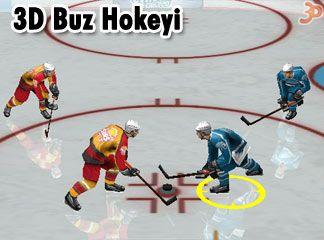 3D Buz Hokeyi