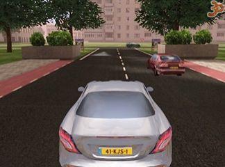 3D Özel Şoför