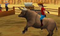 3D Rodeo