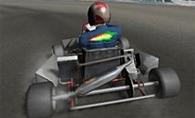Wild Kart Yarışı